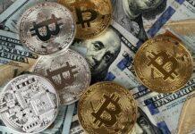 8 Datos curiosos sobre las criptomonedas
