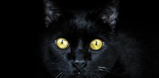Origen de las supersticiones